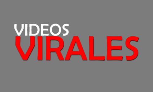 Videos virales que molan!!